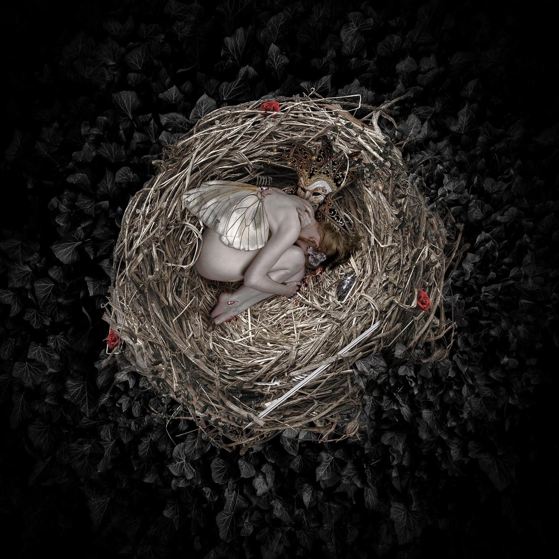 Nest Artwork by Olivier Gros