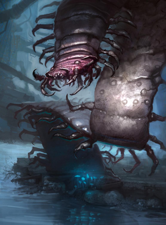 Giant Centipede Artwork by Grzegorz Bobrowski