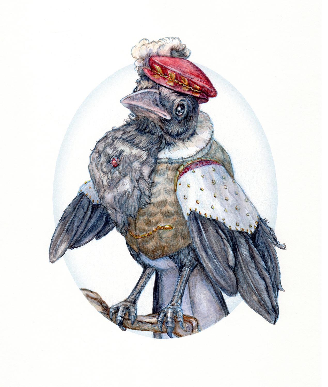 Sir Squawk Artwork by Belinda Morris