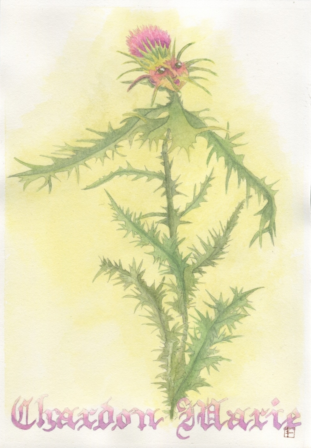The Milk Thistle Artwork by artist Eve