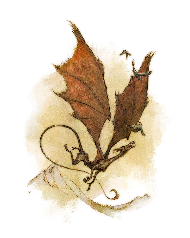 Drakar och Demoner -  Young Dragon  Artwork by David Brasgalla