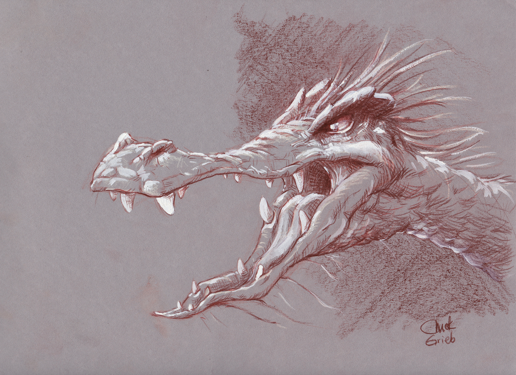 Young dragon Artwork by Chuck Grieb