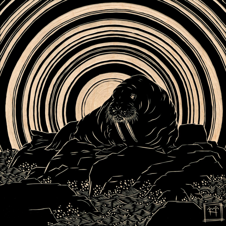 Walrus Artwork by M'fanwy Dean